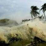 Extreme Weather Threatens Rich Ecosystems
