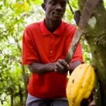 Broken Food System Fails Smallholder Farmers