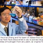 Breakthrough in Hydrogen Fuel Production from Plants