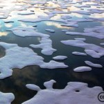 Arctic Region Threatened Further by Ocean Acidification