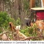 Deutsche Bank, IFC Bankrolling Vietnamese Land Grabs in Cambodia, Laos