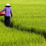 Warmer World Threatens Livelihoods in South East Asia