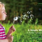 Crown Holdings Releases Second Sustainability Report