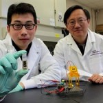 Researchers Develop Energy-dense, Biodegradable Sugar Biobattery