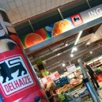 Global Retailer Delhaize Commits to No Deforestation