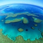 Earth Hour 2014 Launched with Appeal to Save the Reef