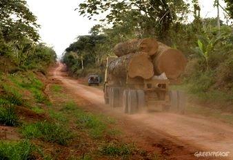 Logging Truck in DRC