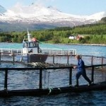 Responsible Salmon Comes to Leading World Market