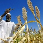 Hotspots of Climate Change Impacts in Africa