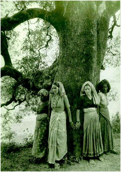 Chipko Movement to Save Trees in India