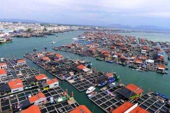 Coastal Development in China