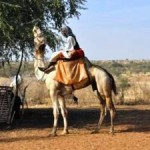 Resource Margins Shrinking in Sahel Region of Africa