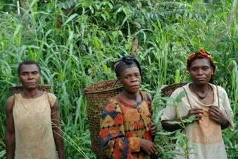 Forest Peoples in Cameroon